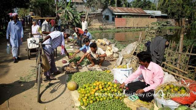 India (G-33) Proposal on Food Security:  A wrong move can jeopardize India's food security forever