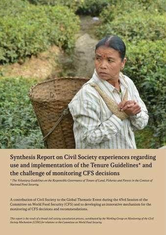 CSM Monitoring Report VGGT final_EN-1.jpg