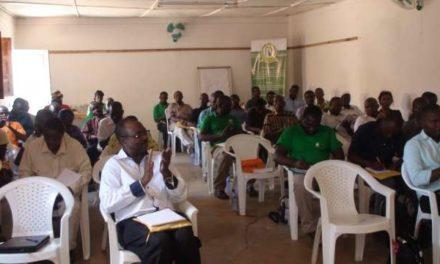 UNAC statement on the ProSavana Programme