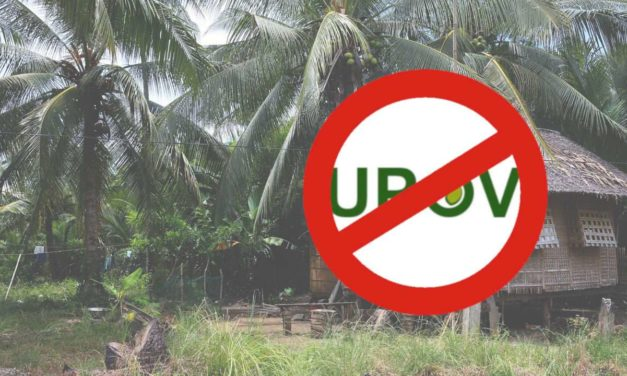 RCEP must not undermine farmers' rights, especially to protect their own plant varieties