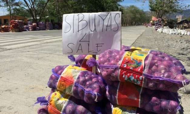 Surviving in a fading countryside: The plight of small food producers under Duterte