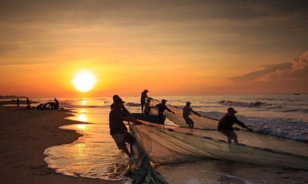 Covid-19 Outbreak: Socio-economic Impact on Small-scale Fisher and Aquaculture in Indonesia