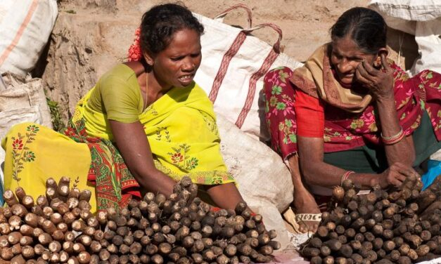 India's forest workers and indigenous communities under lockdown