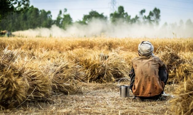 Migrant Agricultural Workers in India and the COVID-19 lockdown