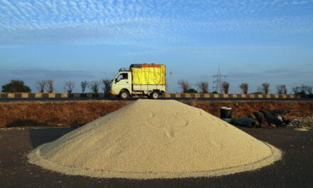 Corporate-Controlled Global Food Supply Chains Must Go