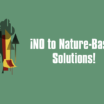 Call for Endorsement: No to Nature-Based Solutions!